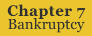 Link to information on Chapter 7 Bankruptcy